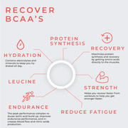 Recover - BCAA | 2:1:1