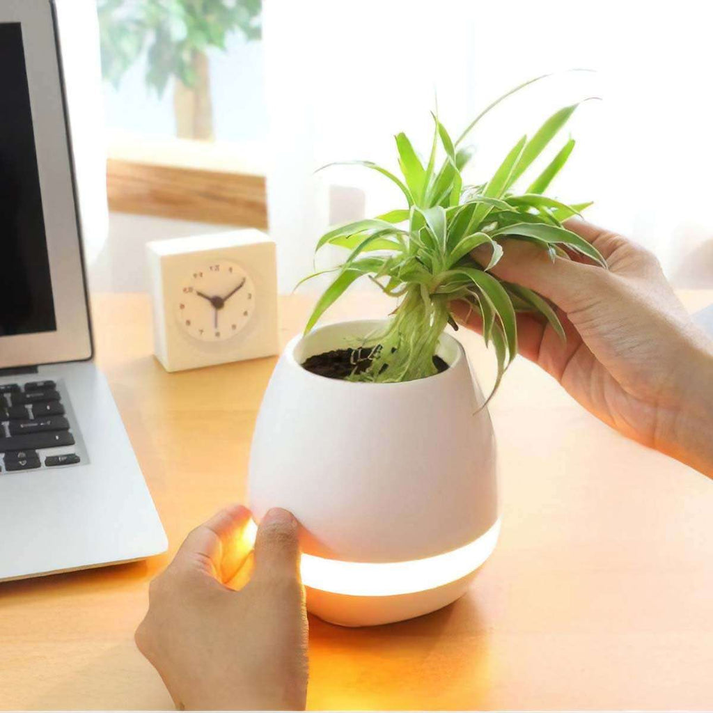 Men's 3 in 1 Bluetooth Planter Light,Tech,Mad Man, by Mad Style