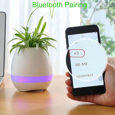 Men's 3 in 1 Bluetooth Planter Light