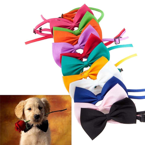 CUTE CANDY COLORED PUPPY DOG BOW TIE