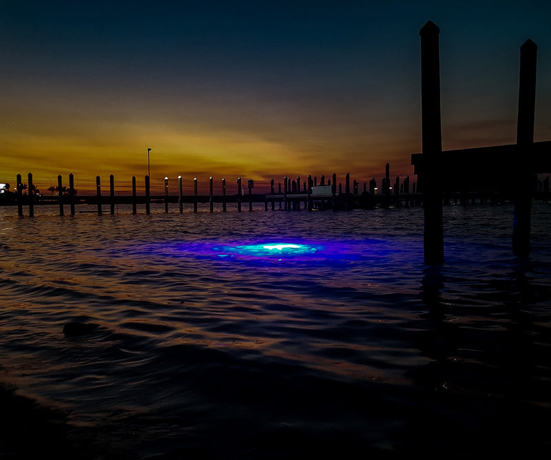 Underwater Dock Lights in saltwater