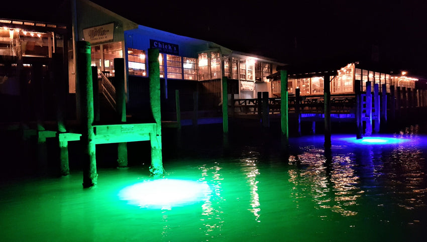 Submersible LED Underwater Lights