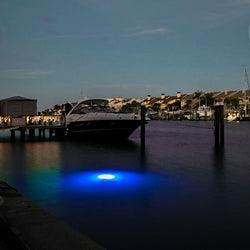 IllumiSea's Apollo Underwater Lighting System is the best marine light on the Market. Apollo Underwater Aquatic Light. Best Underwater Fishing Light on the Market.  Portable and very easy to use. Marine LED Lights, LED Fishing Light, LED Underwater Lights, Underwater Pool Lights, Underwater Pond Lights, Green Fishing Light, Underwater Fishing Light, LED Dock Light
