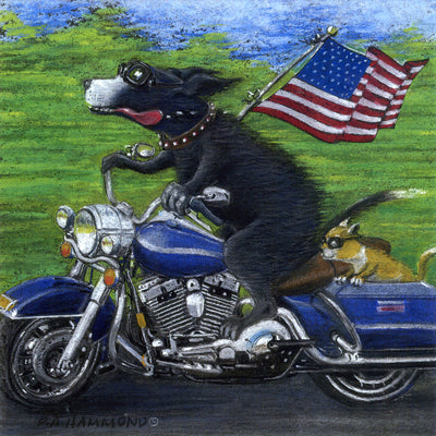 Framed print: American Hawg Dog
