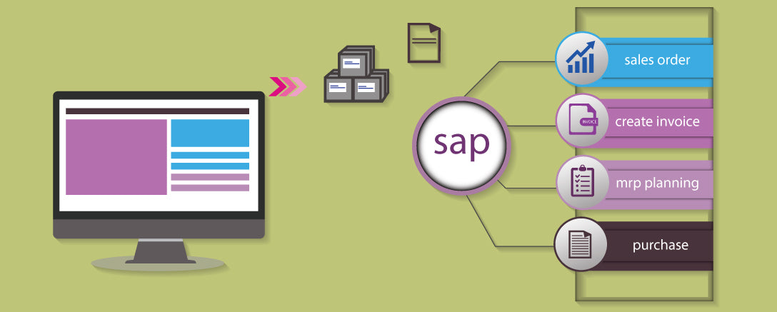 SAP1 – SAP Introduction 1 (SAP Overview End-to-End Process)