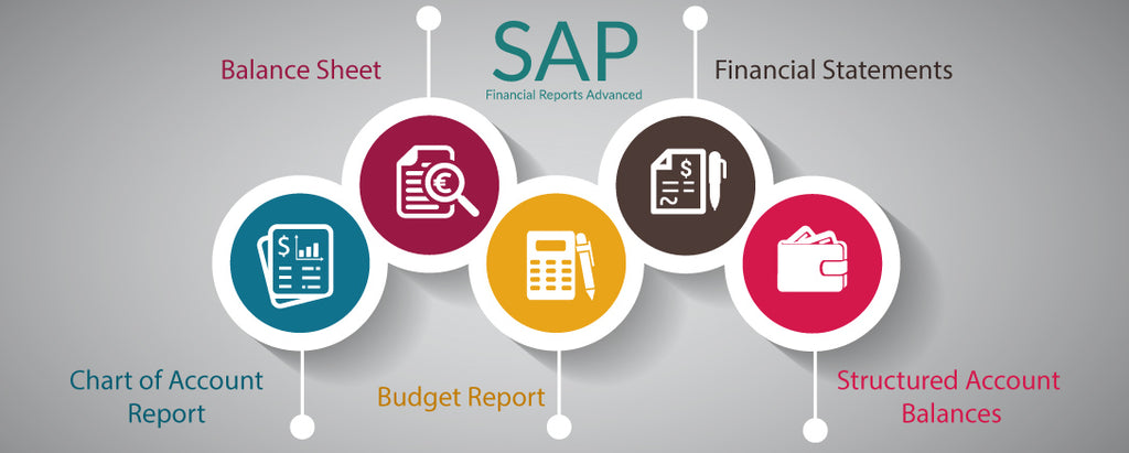 SAP FI - A/P Financial Reports (Advanced Level) User Training Course
