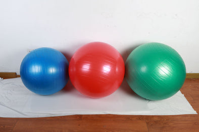 SFE EXERCISE BALL 55CM, 65CM, 75CM