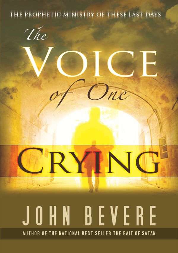 The Voice of One Crying eBook