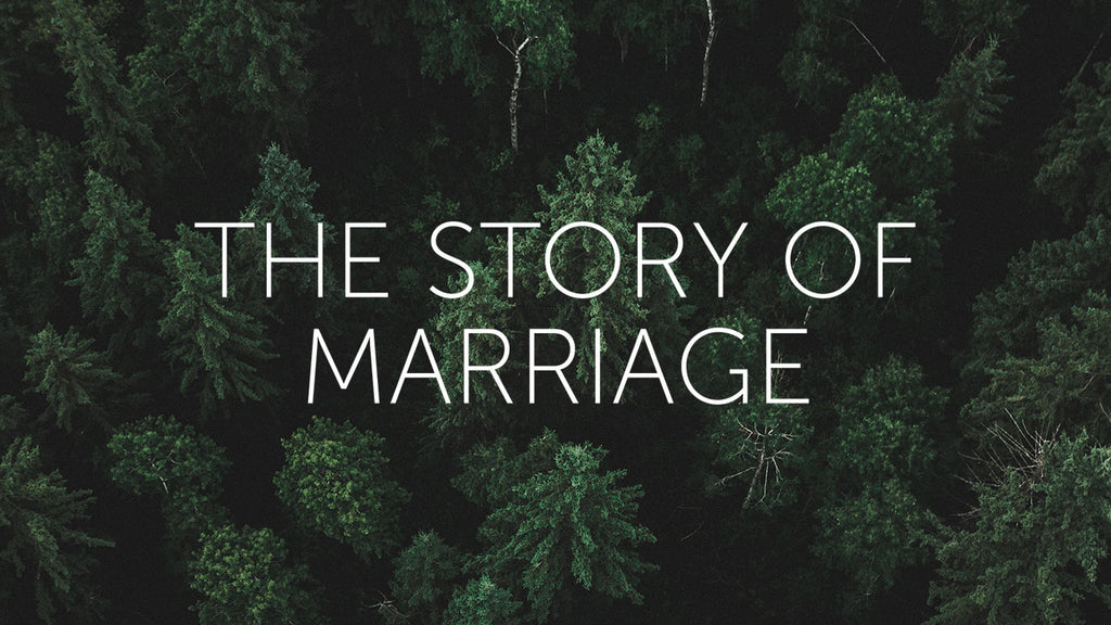 The Story of Marriage Course