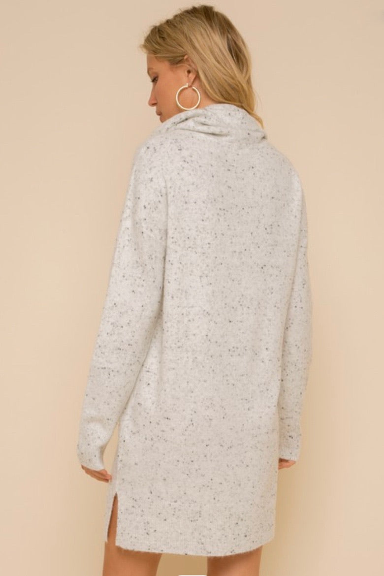 Reagan Speckled Sweater Dress
