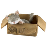 Mini Gray and White Messenger Kitten Sleeping In Box Cat Figurine