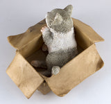 Mini Gray and White Messenger Kitten Sleeping In Box Figurine 3