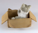 Mini Gray and White Messenger Kitten Sleeping In Box Figurine 4