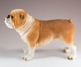 English Bulldog Brown and White Dog Figurine 2