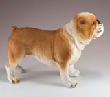 English Bulldog Brown and White Dog Figurine 3