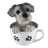 Schnauzer Puppy In A Tea Cup Dog Figurine
