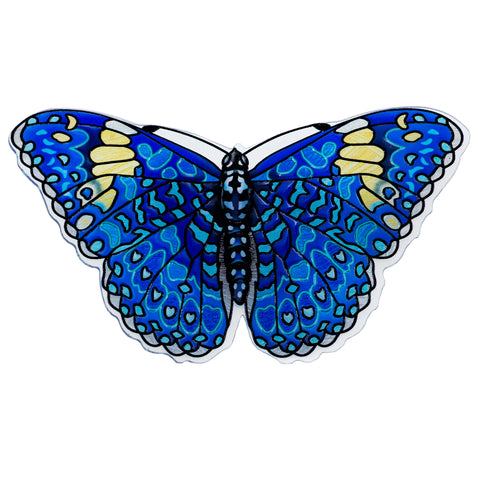 Blue Variable Cracker Butterfly Magnet By AMIA