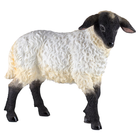 Black Faced Lamb Sheep Figurine 1