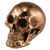 Little Skull Copper Chrome Finish Figurine 1