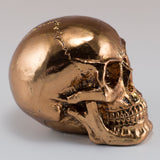 Little Skull Copper Chrome Finish Figurine 3