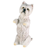 Westie West Highland White Terrier Dog Figurine Begging 1