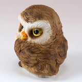 Cute Mini Baby Owl With Head Turned Figurine 4