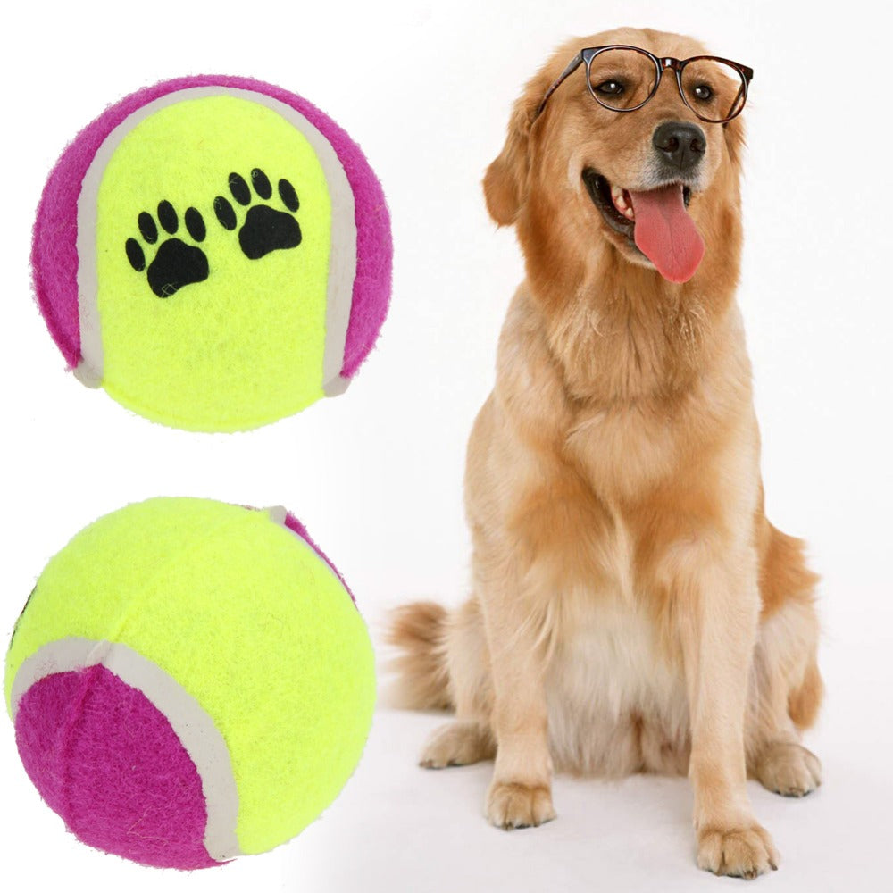 Inflatable Tennis Ball Dog Toy Crown A Dog