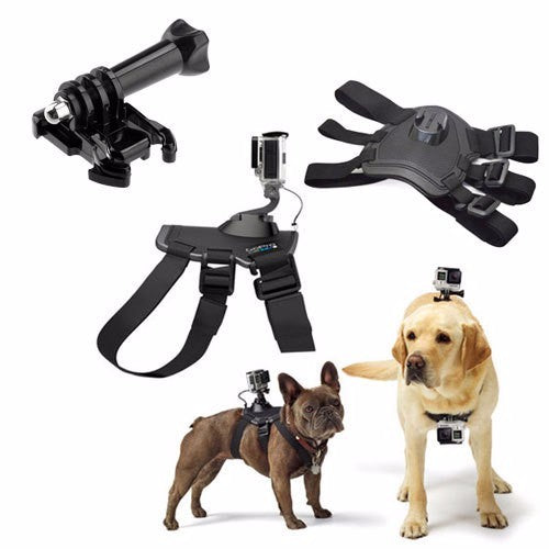 GoPro Camera Harness