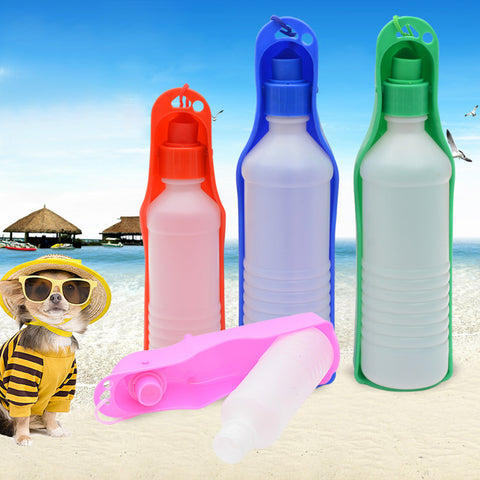 Outdoor Portable Drinking Bottle