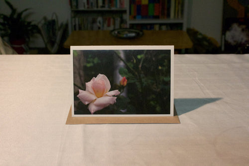 Richmond Roses Greeting Card