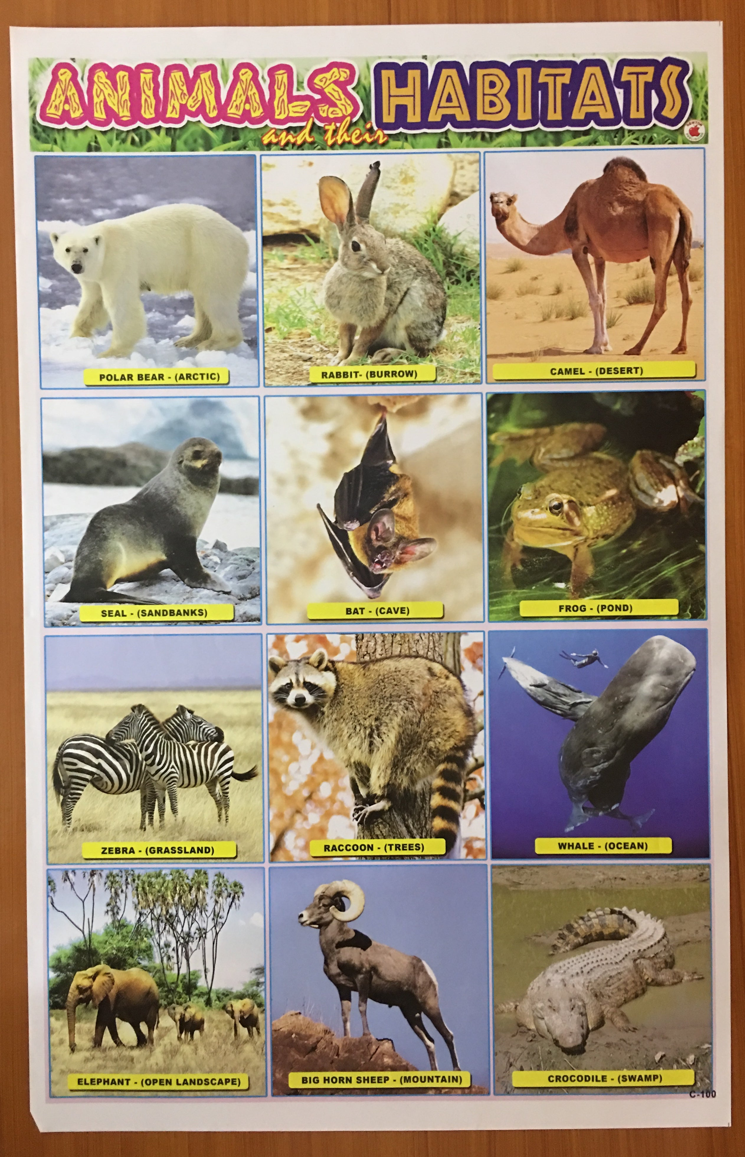 CHART Animals And Their Habitats   Shopcore Inc.