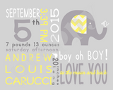 On The Day You Were Born-Boy Elephant