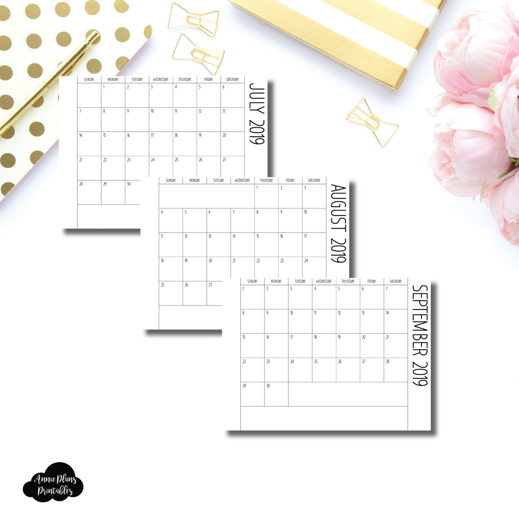 Micro HP Size | 2019 - 2020 Monthly Fold Over/Pull Out Printable Insert ©