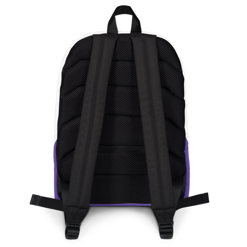 Backpack for Pin Display