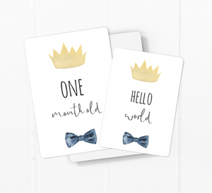 Toucan Little Prince Baby Milestone Cards