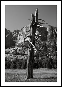 Yosemite Valley I