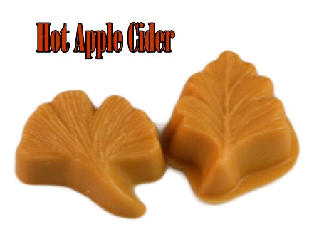 Hot Apple Cider ~ Fall Leaf 2 Pack - Epic Wax