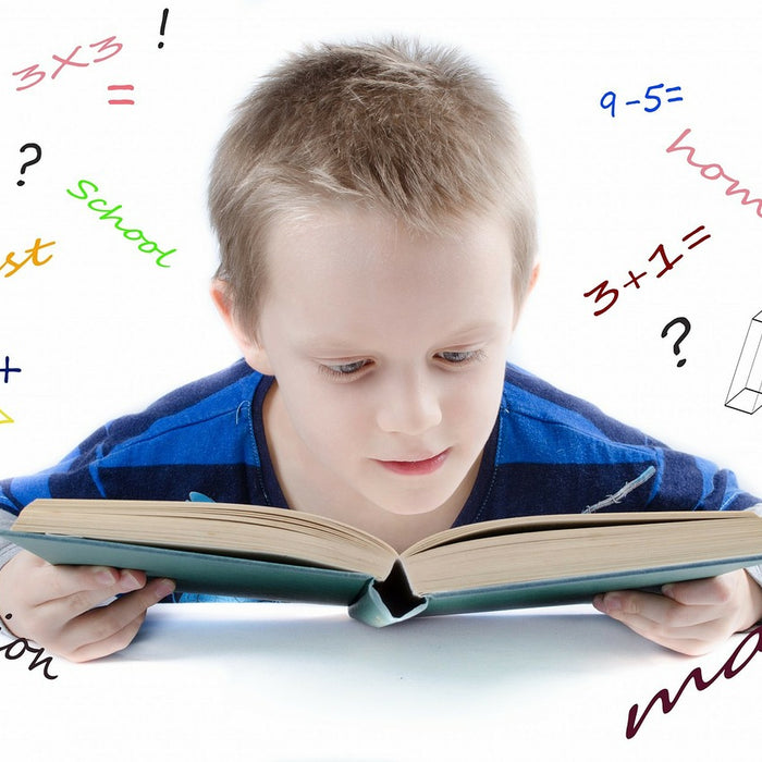 How Montessori help children to learn math effectively