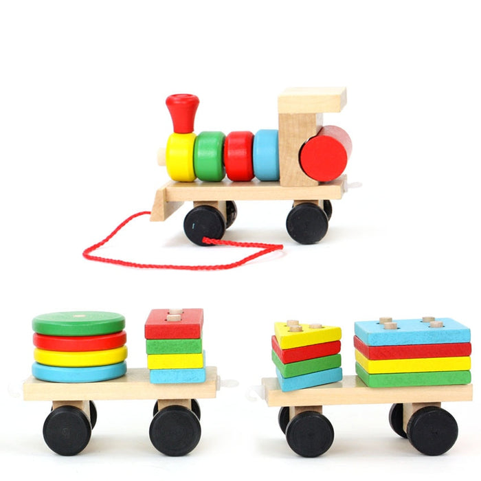 Montessori Wooden Train Cognitive Blocks - eBabyZoom