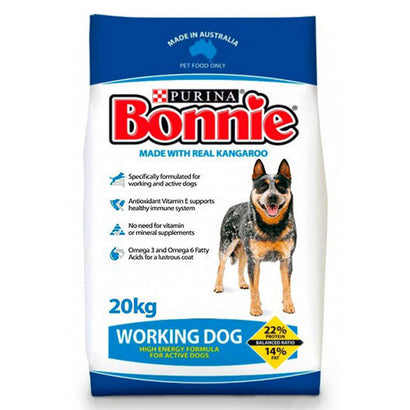 Bonnie Working Dog