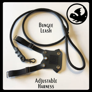 Adjustable Harness and Bungee Leash