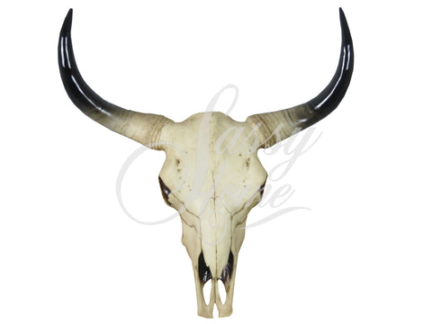 Large Bull Skull Wall Ornament - JG015