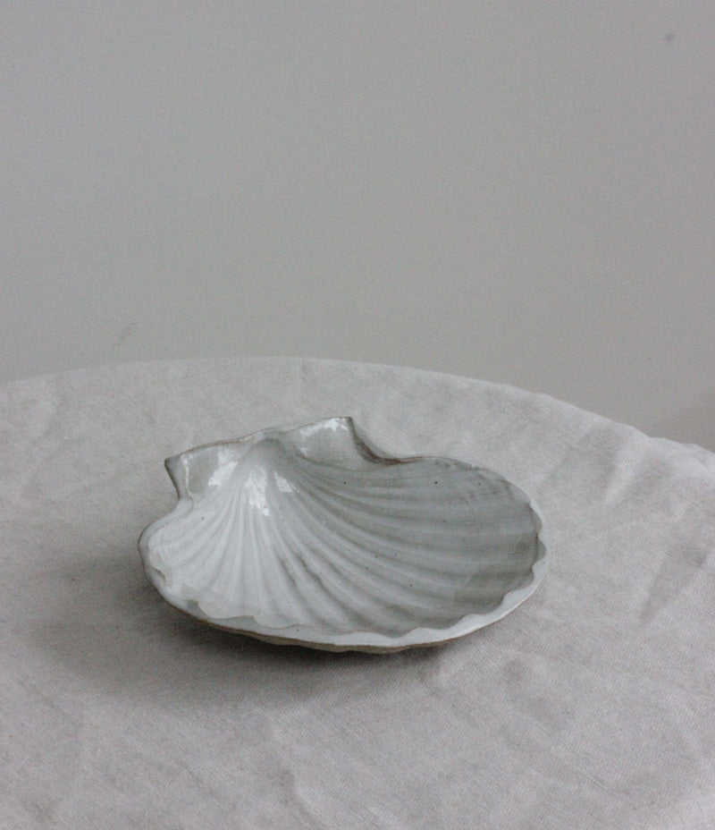 Large Scallop – Eleanor Torbati - Nor–Folk