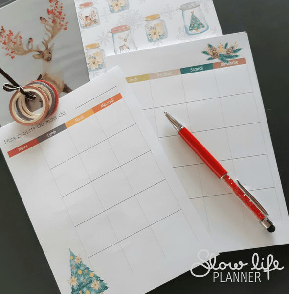 Goodies Planner Box de Janvier