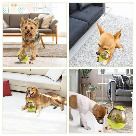 Snacky-Ball, Bola Interativa Pet Comedouro