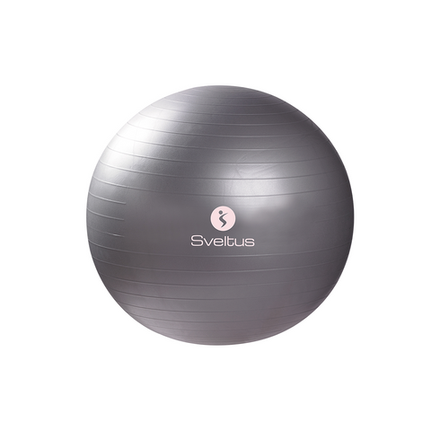 Gymball 65 cm - Gladform Active Gear