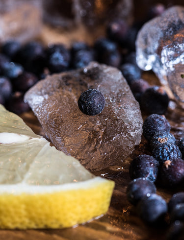 What to Expect from a Gin Tasting Experience in London?