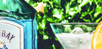 BLOG: 11 Brilliant Gin Adventures