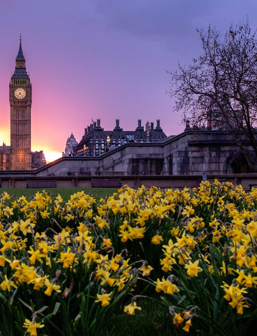 The Ultimate Guide to London Experiences