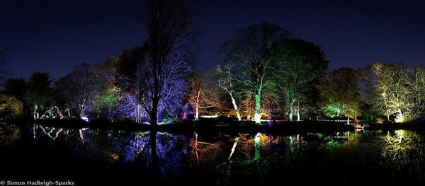Feelgood festive Syon Park's Enchanted Woodland